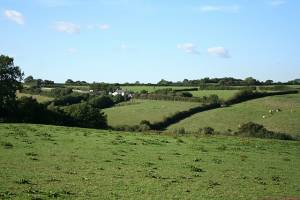 Witheridge: towards West Pilliven