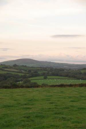 View towards Preseli TV Mast