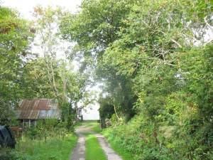 Lane leading to Bryn-yr-Eryr