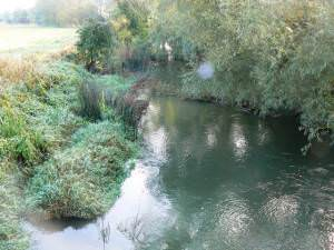 River Thames downstream of Hannington Bridge, Wiltshire