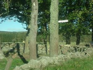 Entry to Dubston