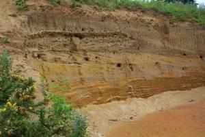 Red crag pit in Rendlesham Forest