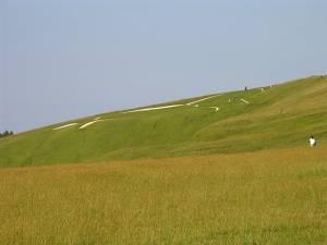 Uffington Horse: White Horse Hill