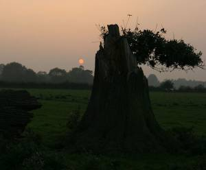 Sunset at Wolverton Mill