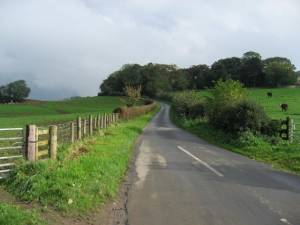 The Road To Alford House