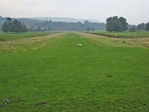 Grass runway on the Kilkerran estate