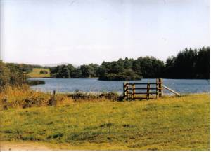 Gate entrance to lochside path