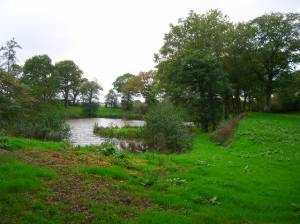 Pond, Braysland Farm