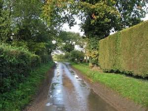 The Road To Dereham