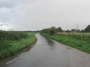 The Road To Brakefield Green