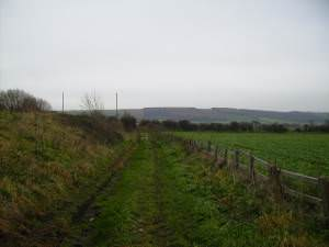 Access track to fields running alongside the A64