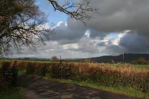 Dalwood: entrance to Larkshayes Farm