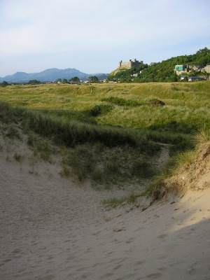 Blowout on the dunes at Harlech