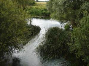 The Thames near Castle Eaton, Wiltshire