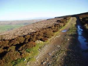 Moorland track on Harkerside Moor