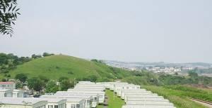Sugar Loaf Hill and Caravans, Goodrington