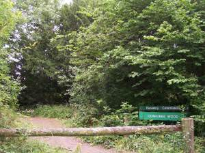 Conigree Wood, southern entrance