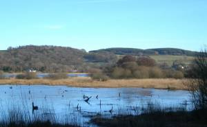 Looking from the RSPB Hide