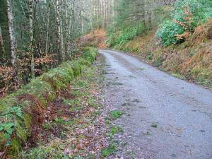 The Faichem Road in Glen Garry