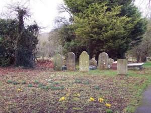 Gravestones and Crocus Flowers, St James Church