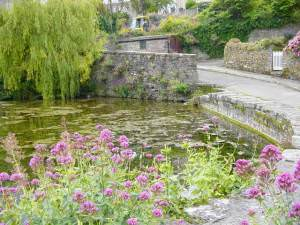 The Mill Pond  Swanage