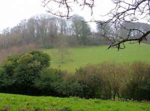 View across Valley from Morval Churchyard