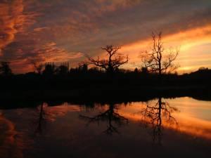 Sunset, Beaconsfield Farm, Hadnall, Nr Shrewsbury
