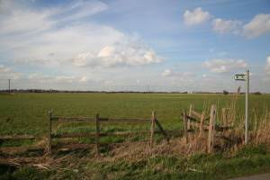 Middlemarsh farmland