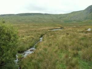 Stream, Llugwy valley