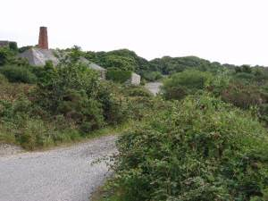 Old mine buildings at Wheal Busy