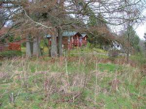 Wooden Chalets at Redburn
