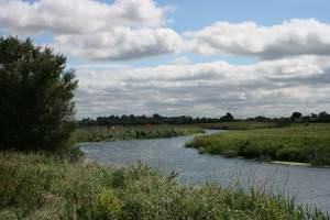 River Parrett near Aller