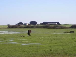 Binney Farm, Allhallows