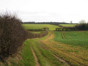 Footpath going south from Greetham to Exton Park