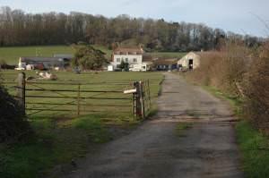 Dripshill Farm