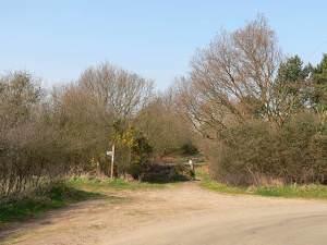 Bridleway towards Tangham House
