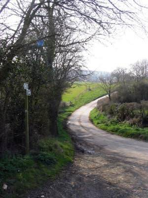 Track to Denhay Farms