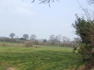 Marches pasture land