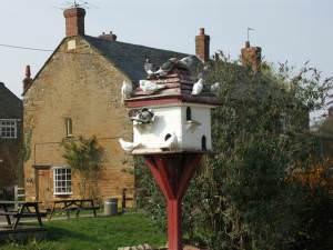 Doves in Residence