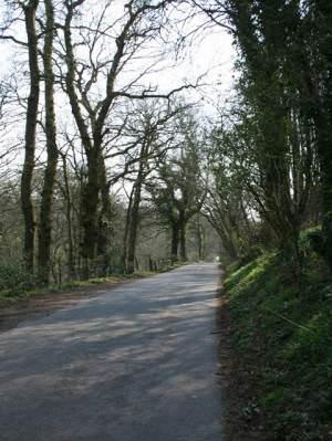 Shut Mill Lane