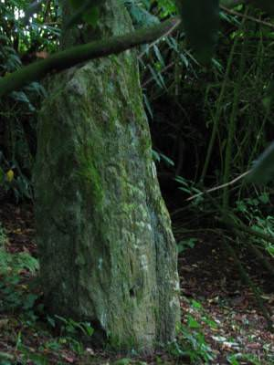 Inscribed Stone