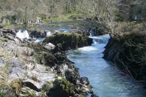 Cenarth Falls, River Teifi