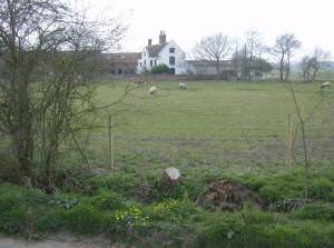 Church Farm