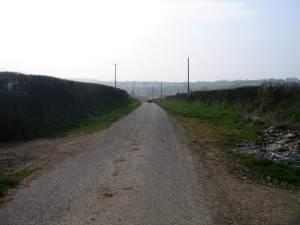 Ffordd Fferm ger Rhyd Rosser / Farm road near Rhyd Rosser