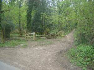 Track & Footpath into Priory Wood