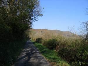 Lon gul uwchben Penmorfa / Narrow lane above Penmorfa
