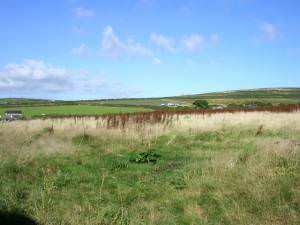 Fields between Numphra and Joppa