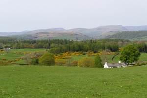 Nice spot for a farm