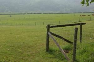 Farmland near Lickhill