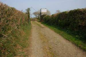 Track near Barn Farm, Kilkhampton